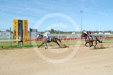 Race 1 De Losko