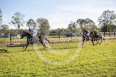 Race 5 Craiglea Cetina