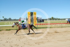 Race 2 Tycoon Zip