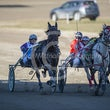 Race 4 Rowdys Ace