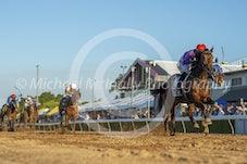 Race 5 Grande Casadora