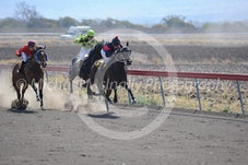 Race 2 Rosinca