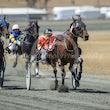 Race 2 Lighthorse