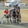 Race 5 Reddy Fire