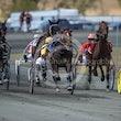 Race 1 Rosehill Magic