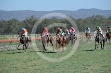 Race 2 Primmiscuous