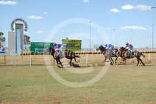 Race 3 Spezia Lady