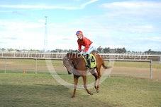 Race 4 Teya