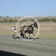 Race 7 Wecanonlyhope