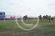 Race 5 Geng
