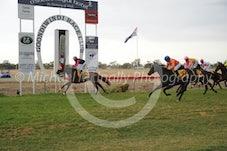 Race 3 Cartland