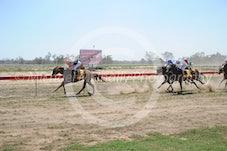 Race 1 Grace Darling