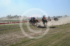 Race 5 Primmiscuous