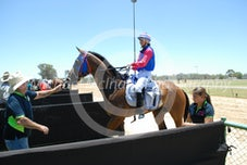 Race 3 Haramain