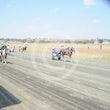 Mini Trotters Race 1 It's Not Harry