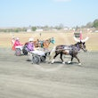 Mini Trotters Race 3 Awesome Wind