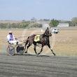 Race 2 Bronski Baby