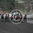 Race 8 Ruato Bay