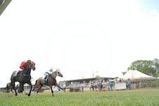 Race 3 Princely  Sum