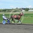 Race 1 Doolittle Desley