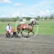 Race 4 Writeaboutchelsea