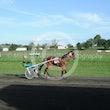 Race 6 Wheres Tascott