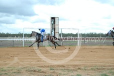Race 1 Fair Fella