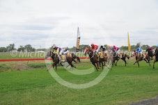 Race 2 Cathvalanna