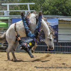 BAREBACK & SADDLE BRONC