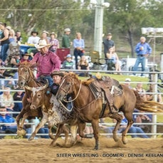 STEER WRESTLING - Taken at the beginning of the night in low light, therefore available as files only at reduced rate.