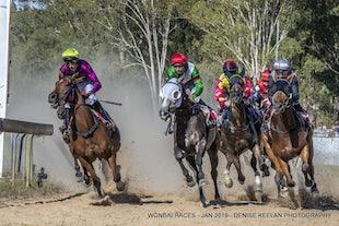 HORSE RACES - 2019