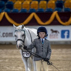 YOUTH HANDLER CLASSES