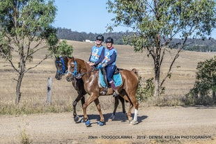 TOOGOOLAWAH ENDURANCE RIDE - JUNE 2019