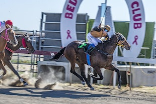 BEDOURIE RACES - SEPTEMBER 2019