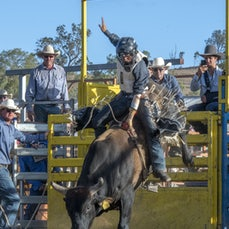 NOVICE BULL RIDE - FIRST SESSION