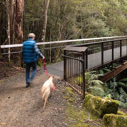 Twin Bridges - Twin Bridges, Tasmania. Landscape architecture by Urban Initiatives