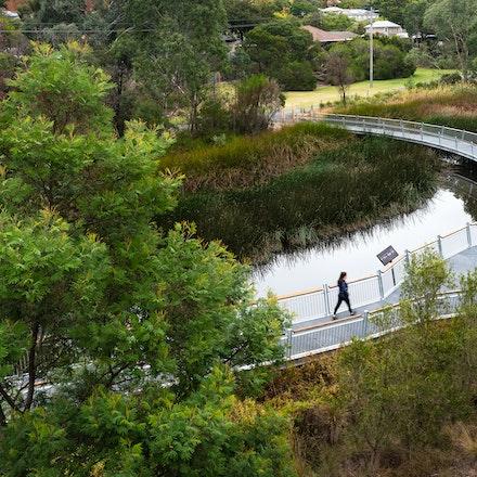 Koonung Creek Reserve - Koonung Creek boardwalk. Landscape architecture by Urban Initiatives