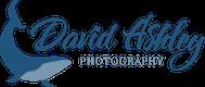 davidashleyphotos.com