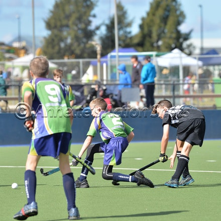 Tuesday U13'S - BRISBANE 2 & GLADSTONE - Tuesday - All images in this Gallery are low resolution and completely untouched.  All purchased images pass through...