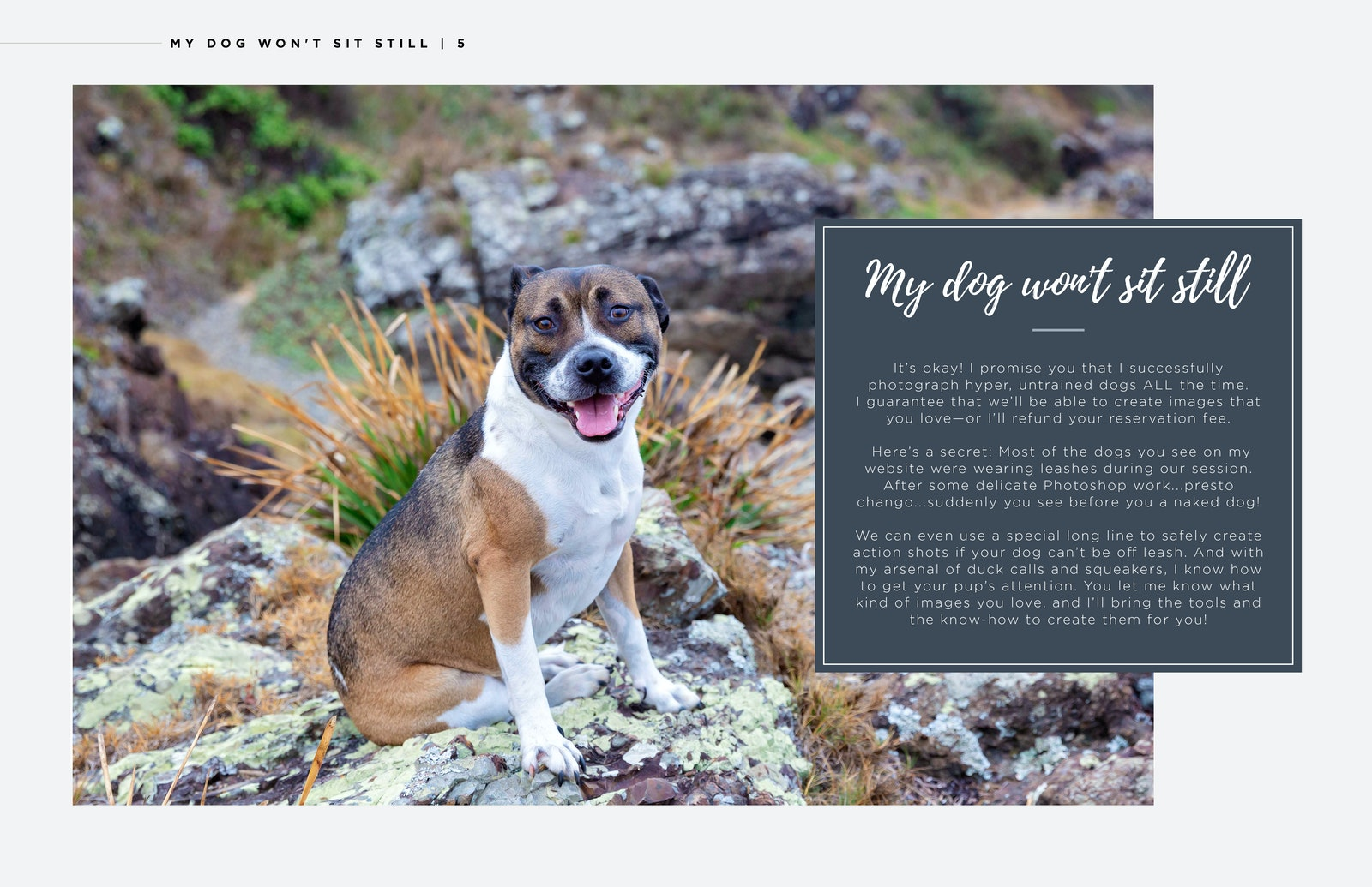Inquiry Guide Double Page Spread_03 Wont stay still