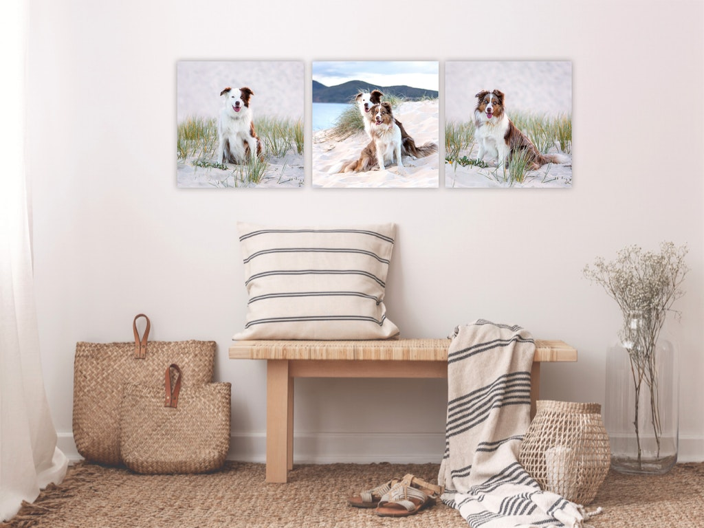 Three Canvas Prints