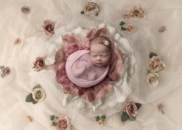 0A7A0037LG DIGITAL sweet rose Aurora W