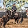 Beaudesert Cutting Points Day June 2018 - Beginner Rider