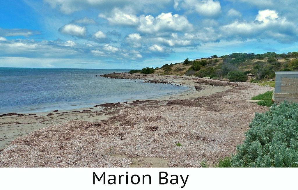 Marion Bay