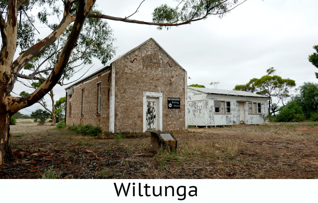 Wiltunga