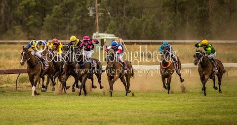 31 01 19 - Race 5 - A Martin Placepick Sarsfield