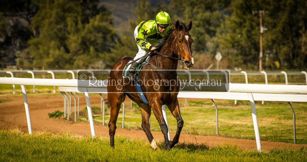 15 Jun 2014 R2-17 - 15th June 2014 - Wellington Race Club - Race 2 - Maiden Hcp, 900m - 1st - Little Bomb Bay, Michael Travers / Aaron Clarke
