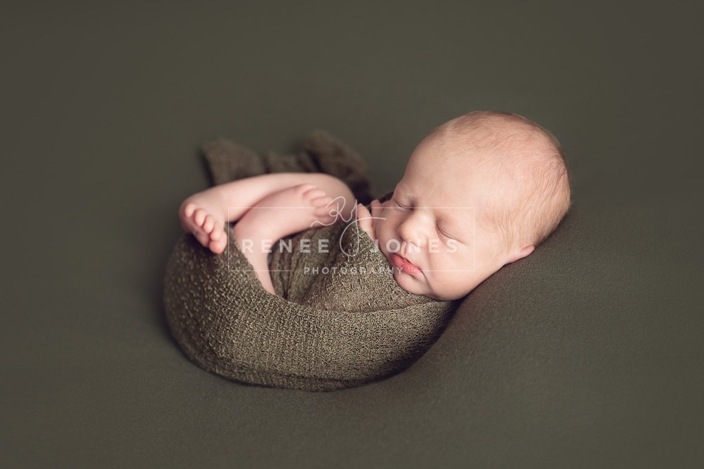 Baby Boy Back Pose - Brisbane Newborn Photographer - Newborn wrapped and in the back pose position on a green backdrop