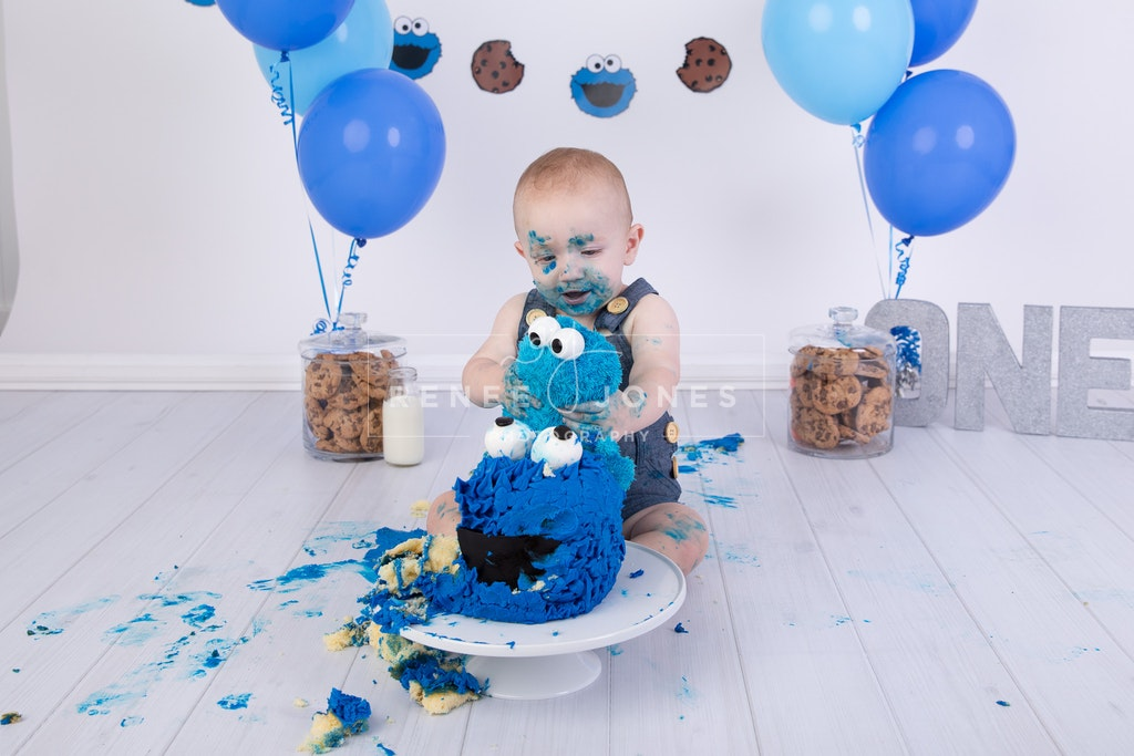 Themed Cake Smash - Brisbane Cake Smash Photographer - A Cookie Monster themed first birthday cake smash