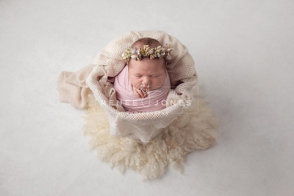 Newborn baby in a prop - Brisbane Newborn Photographer - Newborn baby girl in a cream bucket prop wrapped in pink.